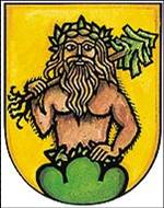 Wildman in Art Coats of arms of Italy